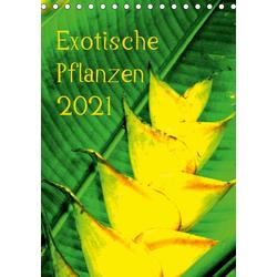 Exotische Pflanzen (Tischkalender 2021 DIN A5 hoch)
