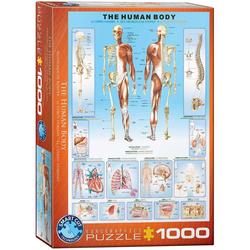 Der menschliche Körper (Puzzle)