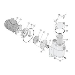 Ersatzteile für 5BR / Motor