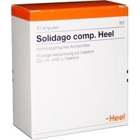 Heel Solidago comp. Heel