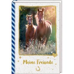 Freundebuch - Pferdefreunde - Meine Freunde. Galoppierende Pferde als Buch von