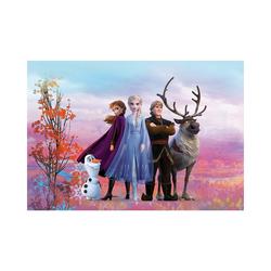 Komar Fototapete Fototapete - Disney Frozen Iconic, 254x368 cm