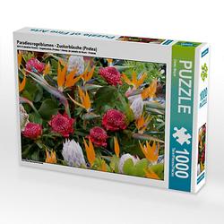 Paradiesvogelblumen - Zuckerbüsche (Protea) Lege-Größe 64 x 48 cm Foto-Puzzle Bild von Dieter Meyer Puzzle