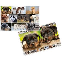 Schreibunterlage 55x35cm Hunde