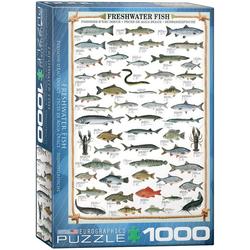 empireposter Puzzle Süßwasser Fische - 1000 Teile Puzzle im Format 68x48 cm, Puzzleteile