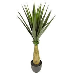 Künstliche Zimmerpflanze Yucca, I.GE.A., Höhe 105 cm