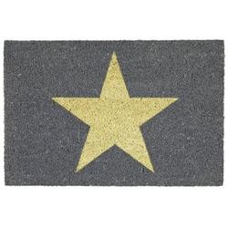 Star Fussmatte grau