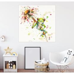 Posterlounge Wandbild, Laubfrosch mit Blume 70 cm x 70 cm