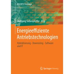 Energieeffiziente Antriebstechnologien: Buch von