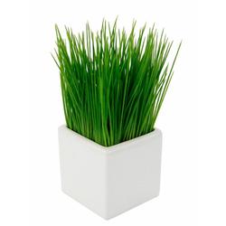 Kunstpflanze Gras, Höhe 22 cm
