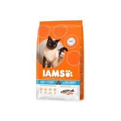 15 Kg Iams Cat Adult mit Meeresfisch