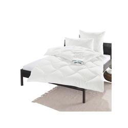 F.A.N. Bettenprogramm Kissen