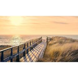 Deco-Panel Way to the Sea, 118/70 cm