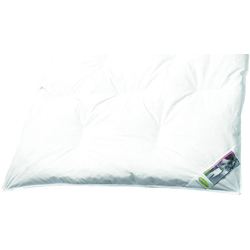 Odenwälder Bett