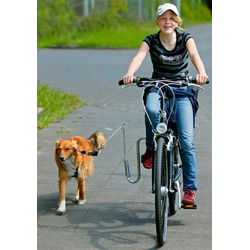 HEIM Fahrradleine, Metall, mit Fahrradhalter für Hunde bis 20 kg