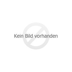Anschluss-Set für wasserführenden Kaminofen extern mit Pufferspeicher