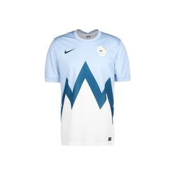 Nike Fußballtrikot Slowenien Home Stadium Em 2021 L
