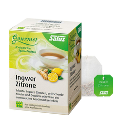 Salus Ingwer Zitrone Tee