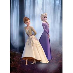 Komar Poster Frozen Wood Walk, Disney 50 cm x 70 cm