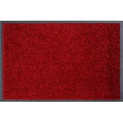 Schmutzfang Perle(LBH 80x60 cm) Astra