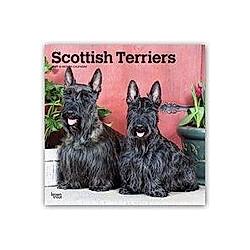Scottish Terriers - Scottish Terrier 2021 - 16-Monatskalender mit freier DogDays-App
