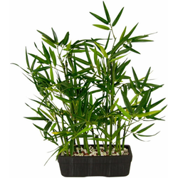 Kunstpflanze Bambus Bambus, I.GE.A., Höhe 41 cm