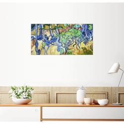 Posterlounge Wandbild, Baumwurzeln und Baumstämme 80 cm x 40 cm