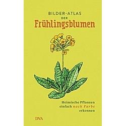Bilder-Atlas der Frühlingsblumen - Buch