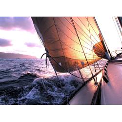 Fototapete Sailing to Sunset, glatt 3,50 m x 2,60 m