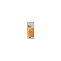 SYNERGON KOMPLEX 69 Erysimum Tropfen 20 ml