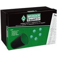 Werder Bremen Spiel Traumtor