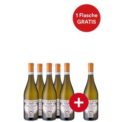 5+1-Paket Felugan Lugana - Weinpakete