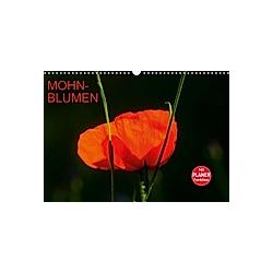 Mohnblumen (Wandkalender 2021 DIN A3 quer)