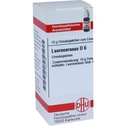 LAUROCERASUS D 6