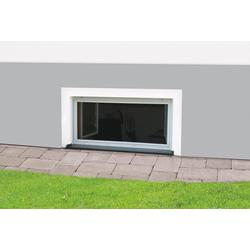 hecht international Nagerschutz-Fenster MASTER SLIM, BxH: 100x60 cm