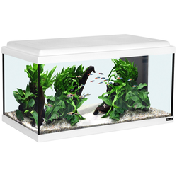 Aquatlantis Aquarium Advance 60 LED, BxTxH: 60x30x34 cm, 54 l
