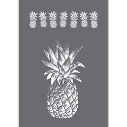 Rayher Siebdruckschablone Ananas grau
