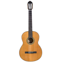 Cort AC250DX Natural