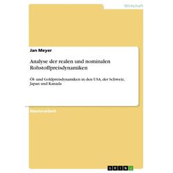 Analyse der realen und nominalen Rohstoffpreisdynamiken als Buch von Jan Meyer