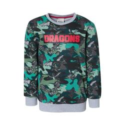 Dragons Sweatshirt Dragons Sweatshirt für Jungen 128/134