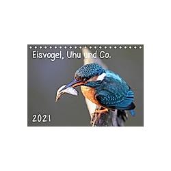 Eisvogel, Uhu und Co. (Tischkalender 2021 DIN A5 quer)