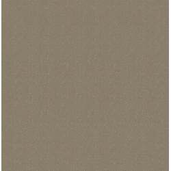 WOW Vliestapete Basic Glitzer, Glitzermuster, (1 St), Beige - 1005x52 cm