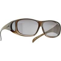 Alpina Sunglasses Overview schwarz 2021 Brillen