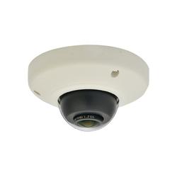 Levelone Panorama Dome Netzwerk Kamera FCS-3092 IP-Überwachungskamera