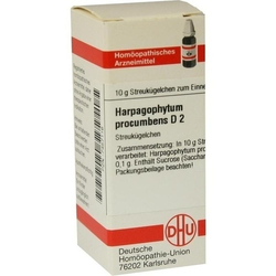 HARPAGOPHYTUM PROCUMBENS D 2 Globuli 10 g
