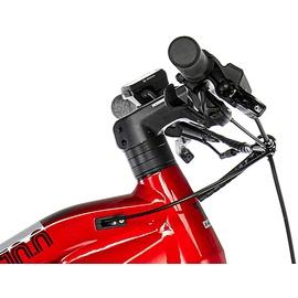 Haibike Sduro HardNine 10.0 29 Zoll RH 40 cm schwarz/rot/silber 2019