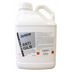 YACHTICON Anti Gilb 5 Liter zum Entfernen von gelblichem Algenbefall