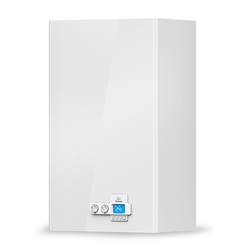 Thermona Gastherme | Kombitherme | Therm 25 KDC 25 kW | Erdgas E / H