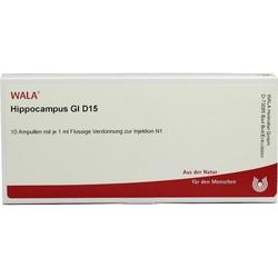 HIPPOCAMPUS GL D15