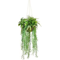 Künstliche Zimmerpflanze Dekokugel zum Hängen Grünpflanze, Creativ green, Höhe 80 cm